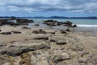 Rocks, Sea and Peace