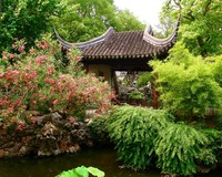 Chinese garden #1