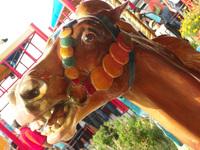 Surprised Carousel Horse