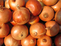 At the market serie : onions
