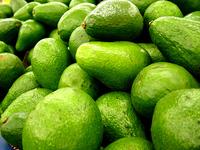 Vegi Goodness - Avocado