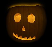 pumpkin in the dark