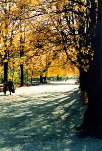 Ujazdowski Park