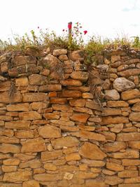 Aspona de pedra