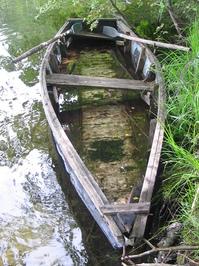 Old boat in the lake