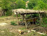 Old cart