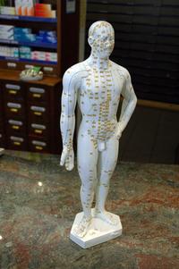 Acupuncture Puppet
