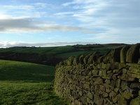 Drystone wall