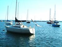 At the Lakeshore 1