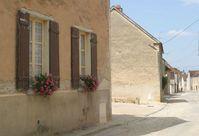 Burgundy 3