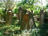 Graveyard0 4