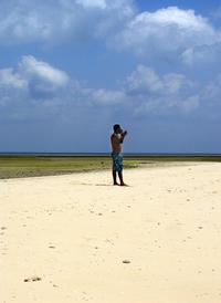 Cellular phone business on beach