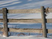 Snow Scape 3
