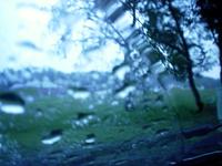 Rainy Day Window 3