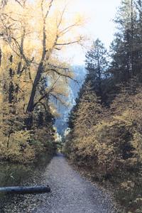 Elk Creek Canyon Trail