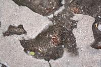 Concrete decay texture 3