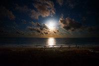 Moonlight over Umbrellas