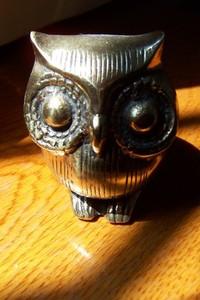Owl & Dust