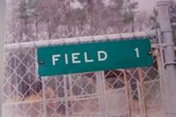 Field 1