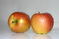 Apples 21