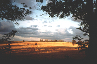 Autumn Yorkshire