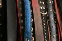 Collars 1