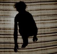 Monkey Shadow