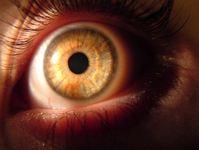 Elisabeth's Eye