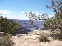 Grand Canyon 24
