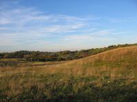 Autumn Fields 1