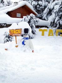 Snowman - Iceman