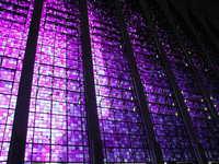 vitrais da catedral dom bosco