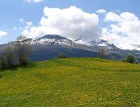 Springtime View to Piz Mundaun