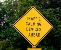 Traffic calming device