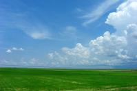 农业农村总畜牧牧师马有祥介绍,近30年来,中国的用水效率明显提高。