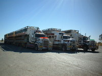 robert82 Road Trains