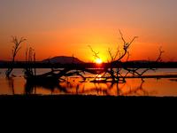 Rufiji Sunset
