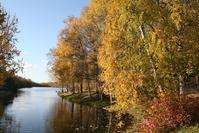 fall in Alaska