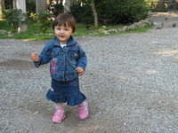 Play,Girl,Pigeon,Jeans,Bird