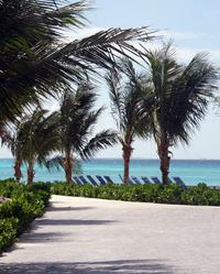Palms, beachs and sunbeds on Half Moon Cay
