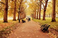 London Park 5