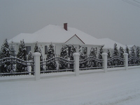 winter pics 1