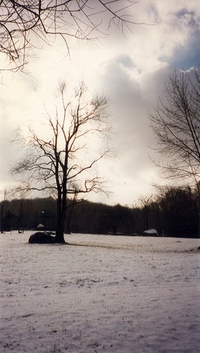 Candlewood Park