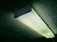 La lamp 1