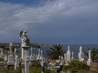 sydney cemetery