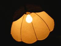 Lamp Shade Light Effect