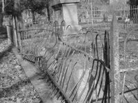 broke fence