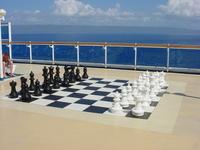 Chess Anyone