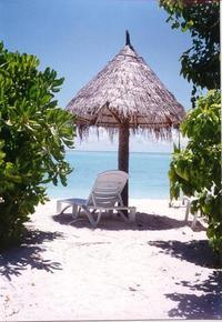 Scenic Maldives