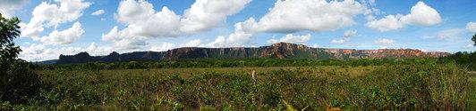 Brazilian savannah